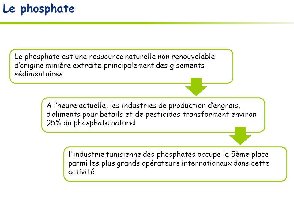 A lheure actuelle, les industries de production dengrais, daliments pour bétails et de pesticides transforment environ 95% du phosphate naturel Le phosphate est une ressource naturelle non renouvelable dorigine minière extraite principalement des gisements sédimentaires l industrie tunisienne des phosphates occupe la 5ème place parmi les plus grands opérateurs internationaux dans cette activité Le phosphate