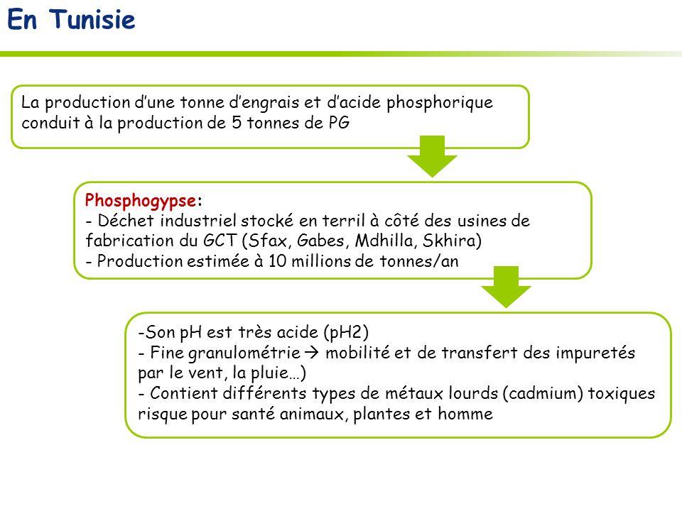 En Tunisie Phosphogypse: - Déchet industriel stocké en terril à côté des usines de fabrication du GCT (Sfax, Gabes, Mdhilla, Skhira) - Production estimée à 10 millions de tonnes/an La production dune tonne dengrais et dacide phosphorique conduit à la production de 5 tonnes de PG -Son pH est très acide (pH2) - Fine granulométrie mobilité et de transfert des impuretés par le vent, la pluie…) - Contient différents types de métaux lourds (cadmium) toxiques risque pour santé animaux, plantes et homme