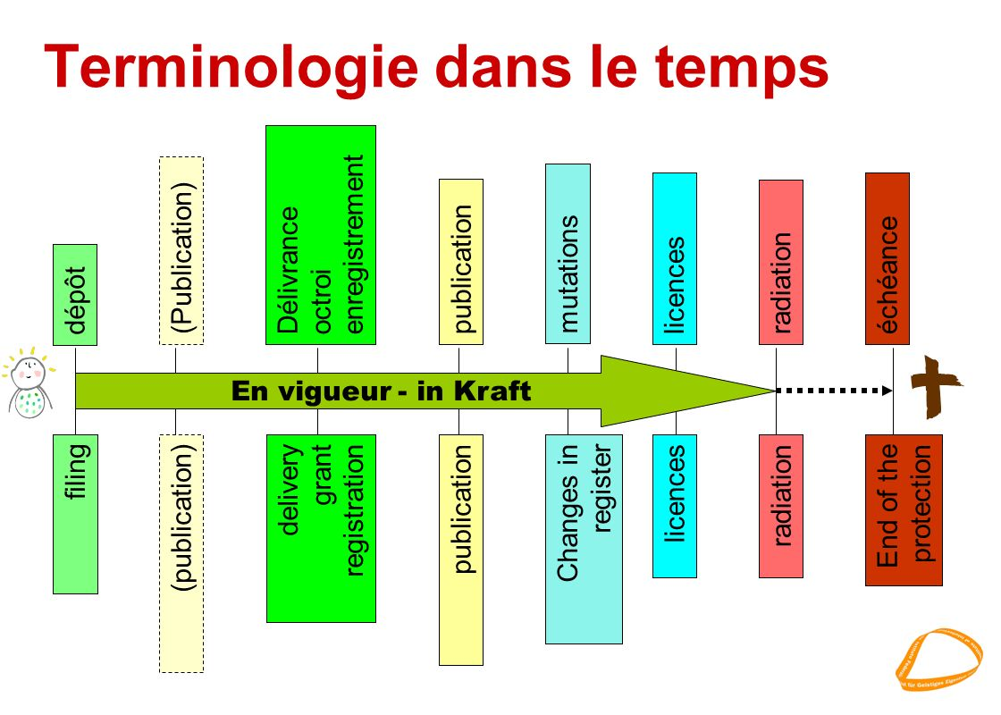 Terminologie dans le temps En vigueur - in Kraft dépôt (Publication) Délivrance octroi enregistrement publication mutations licencesradiationéchéance filing (publication) delivery grant registration publication Changes in register licences radiation End of the protection