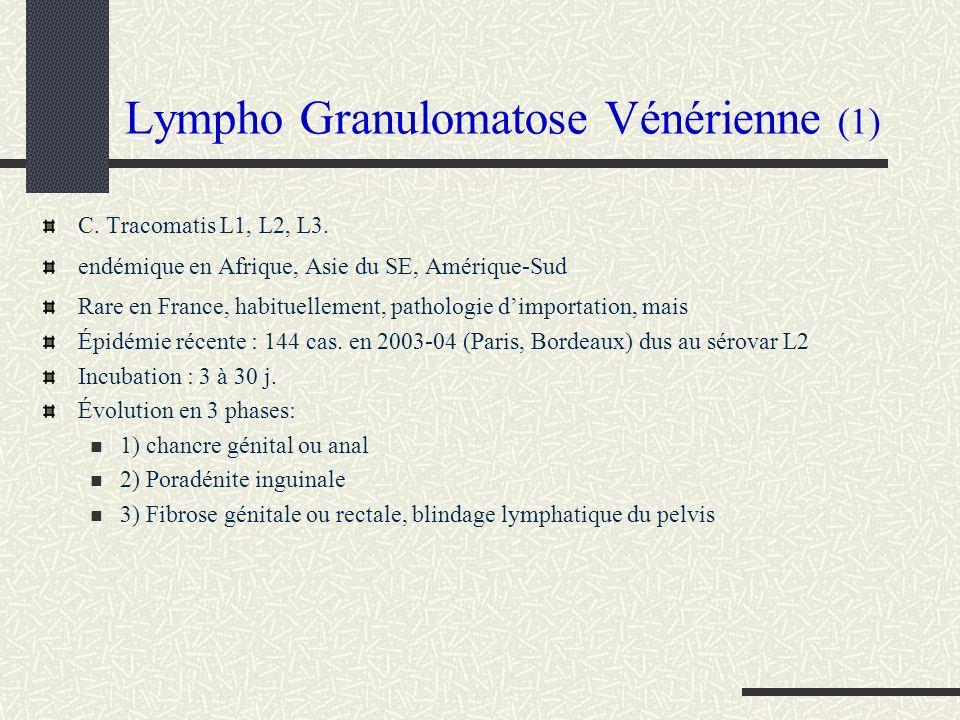 Lympho Granulomatose Vénérienne (1) C. Tracomatis L1, L2, L3. endémique en Afrique, Asie du SE, Amérique-Sud Rare en France, habituellement, pathologi