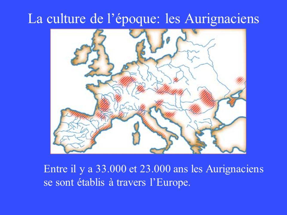 La culture de lépoque: les Aurignaciens Entre il y a 33.000 et 23.000 ans les Aurignaciens se sont établis à travers lEurope.