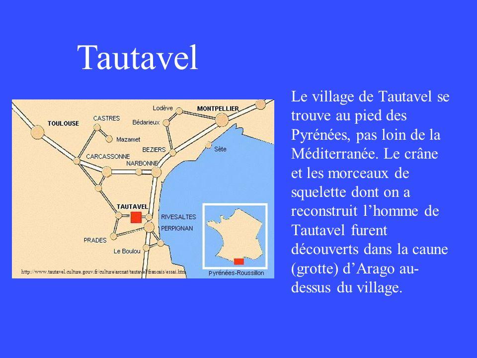 http://www.tautavel. culture.gouv.fr/culture/arcnat/tautavel/francais/essai.htm Le village de Tautavel se trouve au pied des Pyrénées, pas loin de la