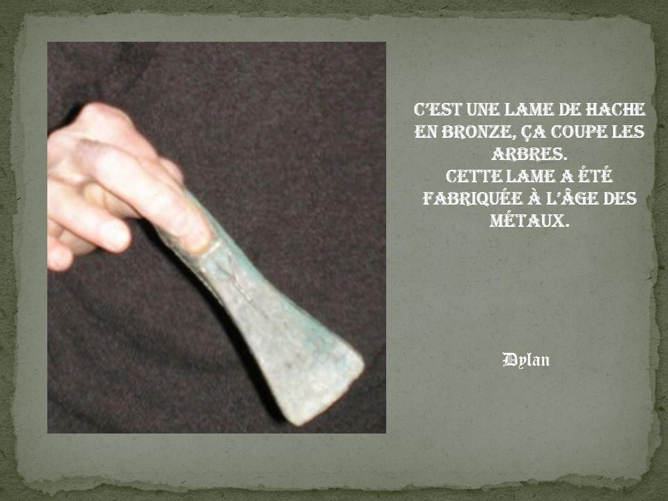 Cest une lame de hache en bronze, ça coupe les arbres. Cette lame a été fabriquée à lâge des métaux. Dylan
