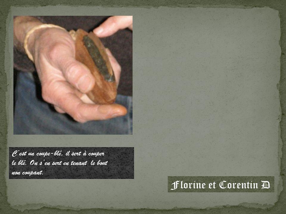 Cest une hache de la Préhistoire, elle est faite avec un manche en bois et la lame est en pierre.