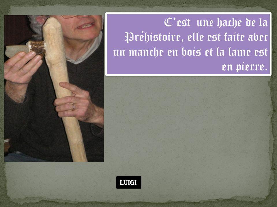 Cest une hache de la Préhistoire, elle est faite avec un manche en bois et la lame est en pierre. Luigi
