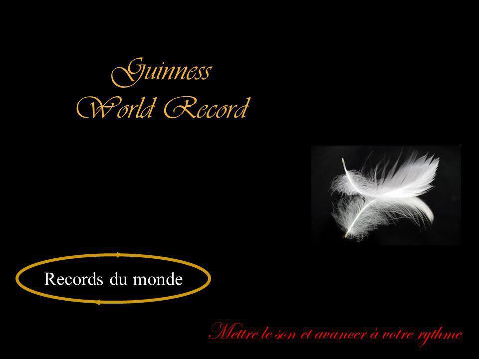 Guinness World Record Records du monde Mettre le son et avancer à votre rythme