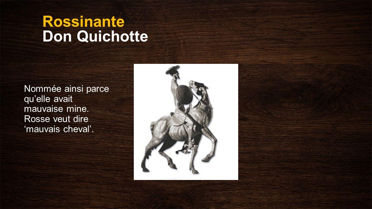 Rossinante Don Quichotte Nommée ainsi parce quelle avait mauvaise mine. Rosse veut dire mauvais cheval.