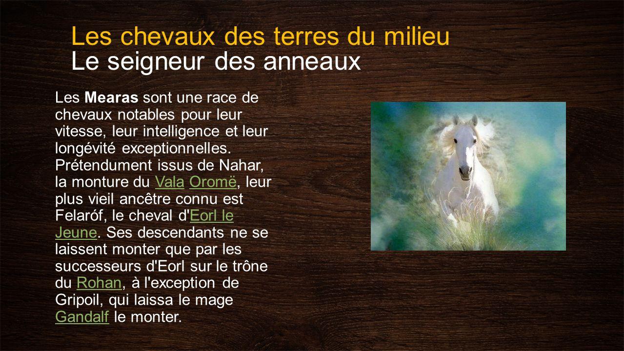 Les chevaux des terres du milieu Le seigneur des anneaux Les Mearas sont une race de chevaux notables pour leur vitesse, leur intelligence et leur lon
