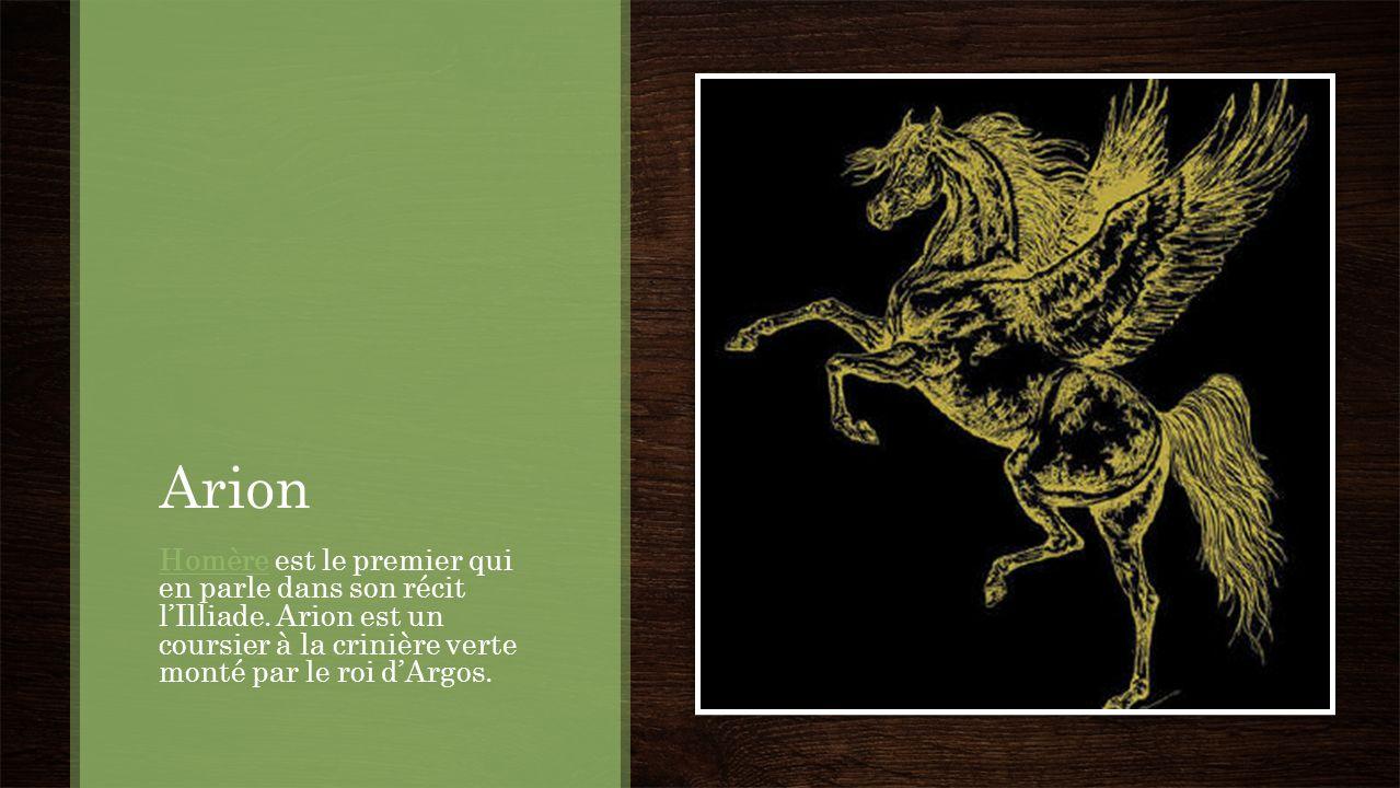 Arion HomèreHomère est le premier qui en parle dans son récit lIlliade. Arion est un coursier à la crinière verte monté par le roi dArgos.