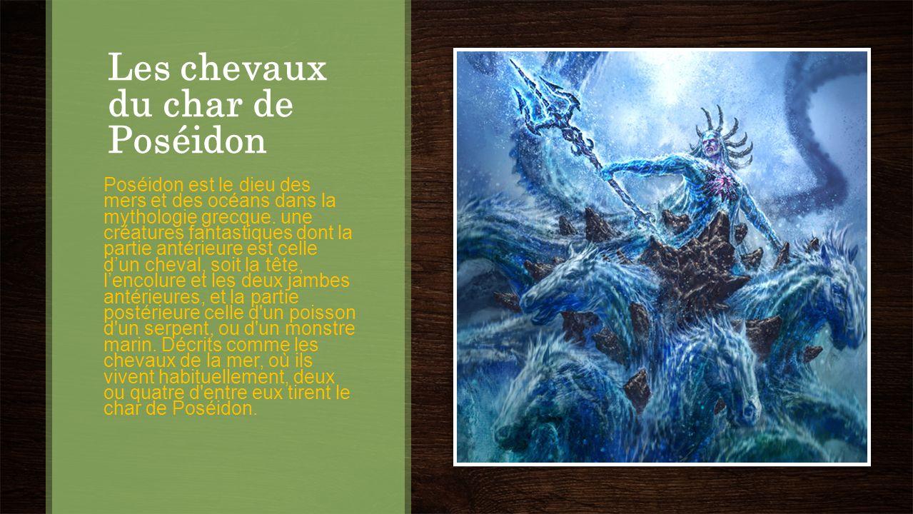 Les chevaux du char de Poséidon Poséidon est le dieu des mers et des océans dans la mythologie grecque. une créatures fantastiques dont la partie anté