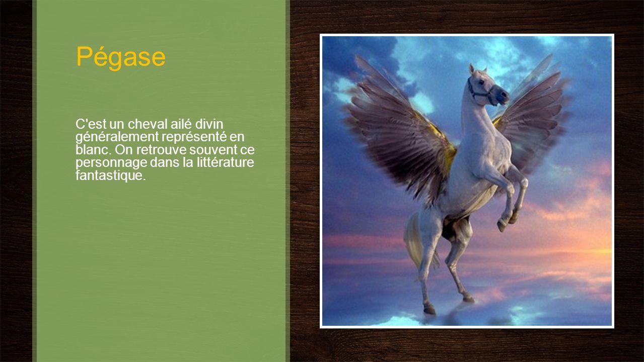 Pégase C'est un cheval ailé divin généralement représenté en blanc. On retrouve souvent ce personnage dans la littérature fantastique.