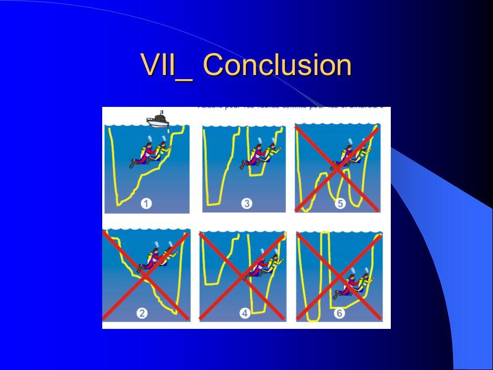 VII_ Conclusion