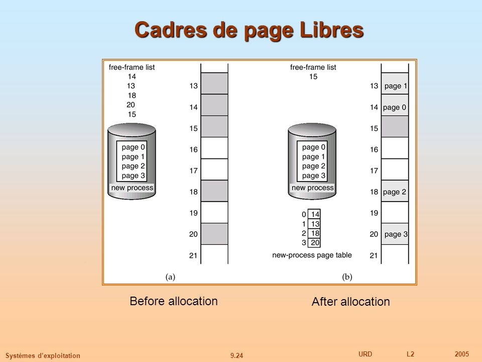 9.24 URDL22005 Systèmes dexploitation Cadres de page Libres Before allocation After allocation