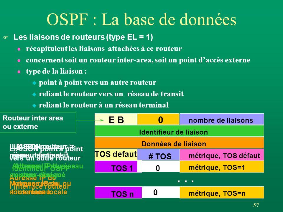 57 OSPF : La base de données F Les liaisons de routeurs (type EL = 1) l récapitulent les liaisons attachées à ce routeur l concernent soit un routeur inter-area, soit un point daccès externe l type de la liaison : u point à point vers un autre routeur u reliant le routeur vers un réseau de transit u reliant le routeur à un réseau terminal E B0 nombre de liaisons Identifieur de liaison Données de liaison TOS defaut métrique, TOS défaut # TOS TOS 1 métrique, TOS=1 0 TOS n métrique, TOS=n 0...