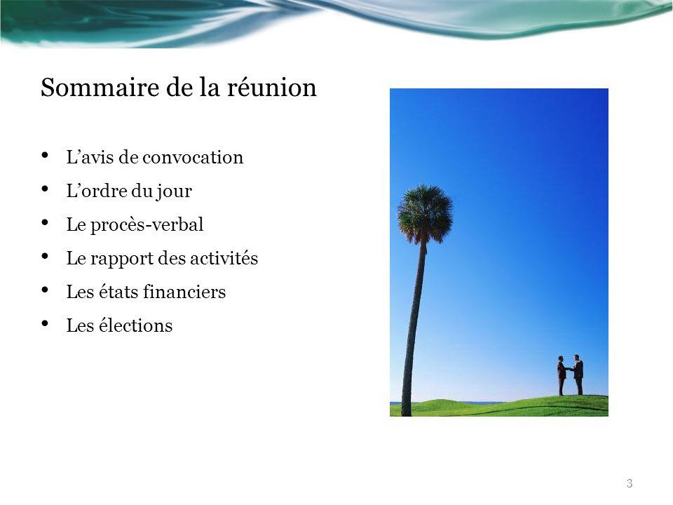 Sommaire de la réunion Lavis de convocation Lordre du jour Le procès-verbal Le rapport des activités Les états financiers Les élections 3