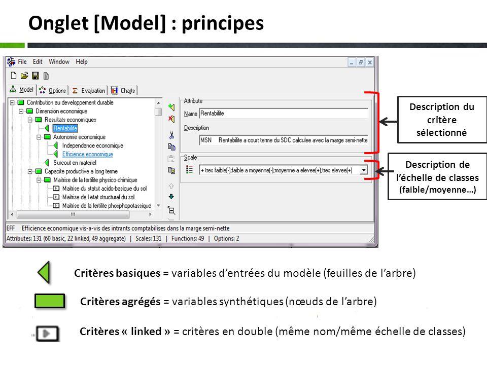 Onglet [Model] : principes Critères basiques = variables dentrées du modèle (feuilles de larbre) Critères agrégés = variables synthétiques (nœuds de l