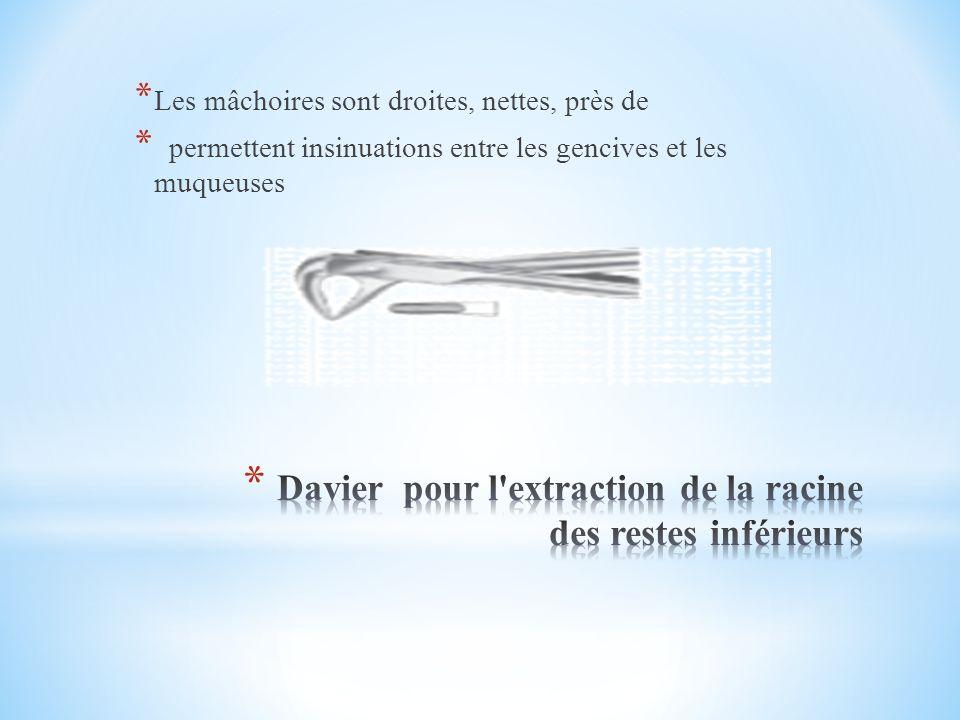 * Les mâchoires sont droites, nettes, près de * permettent insinuations entre les gencives et les muqueuses