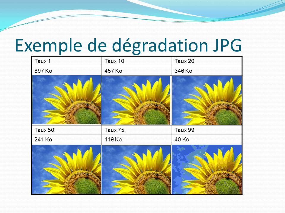 Exemple de dégradation JPG Taux 1Taux 10Taux 20 897 Ko457 Ko346 Ko Taux 50Taux 75Taux 99 241 Ko119 Ko40 Ko