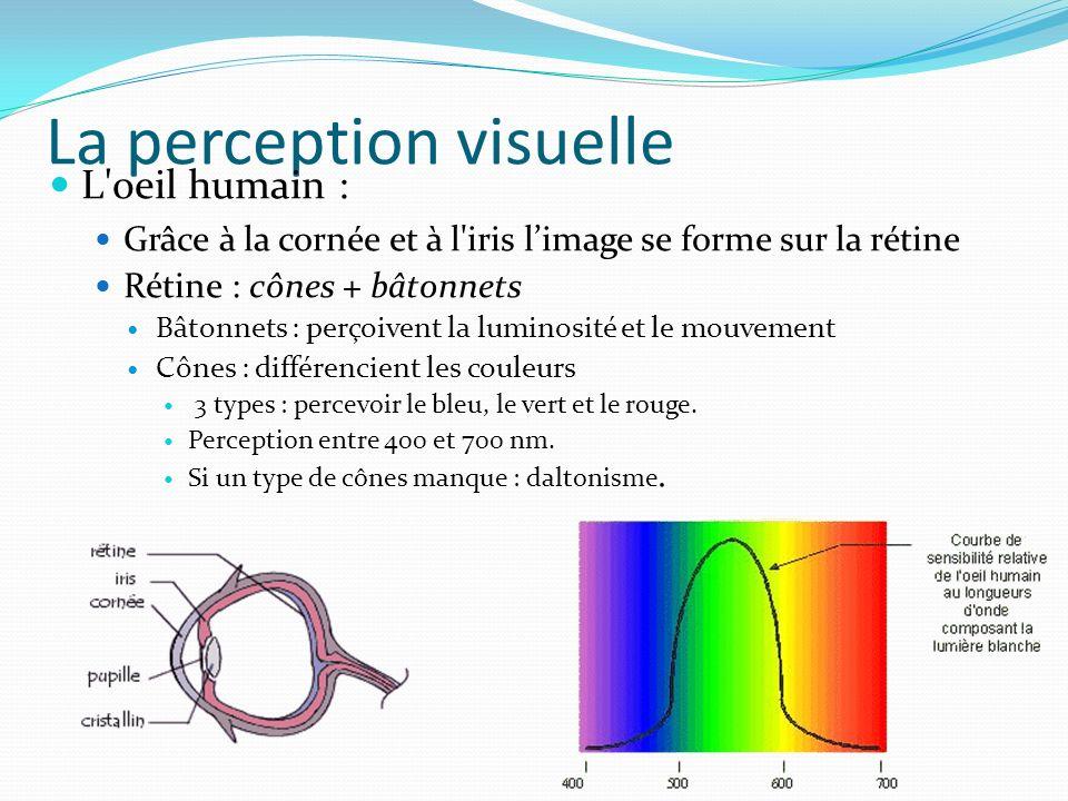 La perception visuelle L oeil humain : Grâce à la cornée et à l iris limage se forme sur la rétine Rétine : cônes + bâtonnets Bâtonnets : perçoivent la luminosité et le mouvement Cônes : différencient les couleurs 3 types : percevoir le bleu, le vert et le rouge.