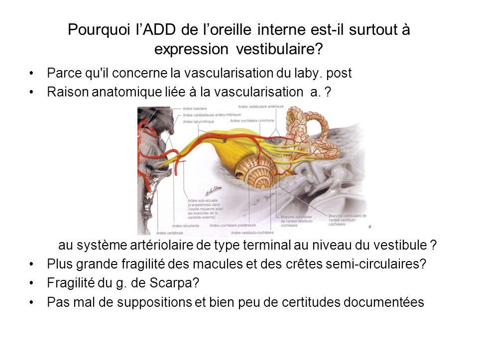 Pourquoi lADD de loreille interne est-il surtout à expression vestibulaire? Parce qu'il concerne la vascularisation du laby. post Raison anatomique li