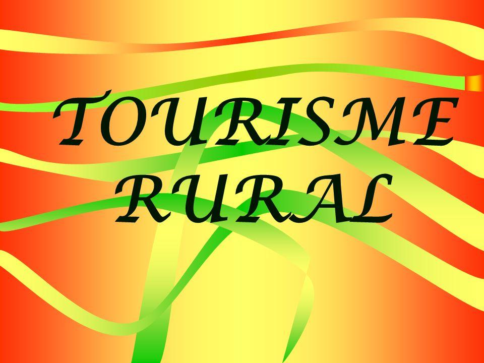 INTRODUCTION Le développement du tourisme rural constitue une stratégie de croissance économique que bon nombre de collectivités rurales et de petites villes considèrent comme un important moyen daméliorer léconomie régionale.