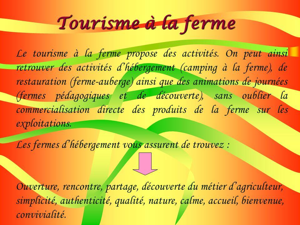 Le tourisme à la ferme propose des activités. On peut ainsi retrouver des activités dhébergement (camping à la ferme), de restauration (ferme-auberge)