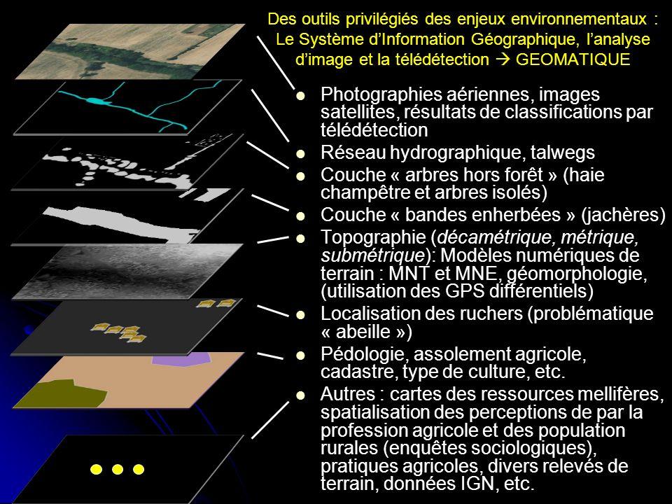 Des outils privilégiés des enjeux environnementaux : Le Système dInformation Géographique, lanalyse dimage et la télédétection GEOMATIQUE Photographie