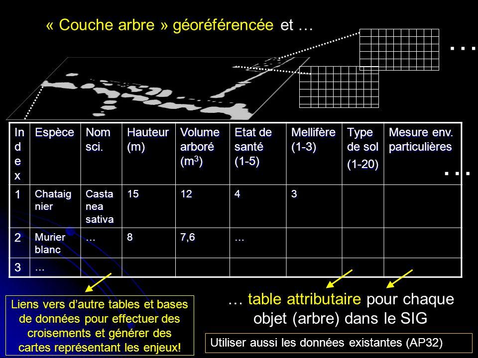 « Couche arbre » géoréférencée et … In d e x Espèce Nom sci. Hauteur (m) Volume arboré (m 3 ) Etat de santé (1-5) Mellifère (1-3) Type de sol (1-20) M