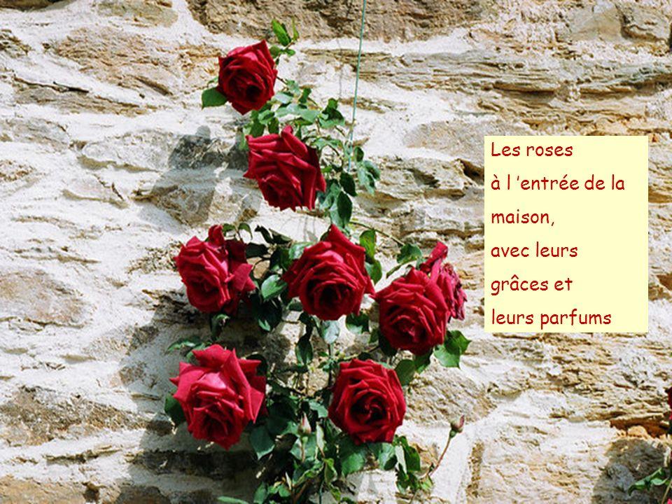 ….aussi avec des jolies fleurs ….