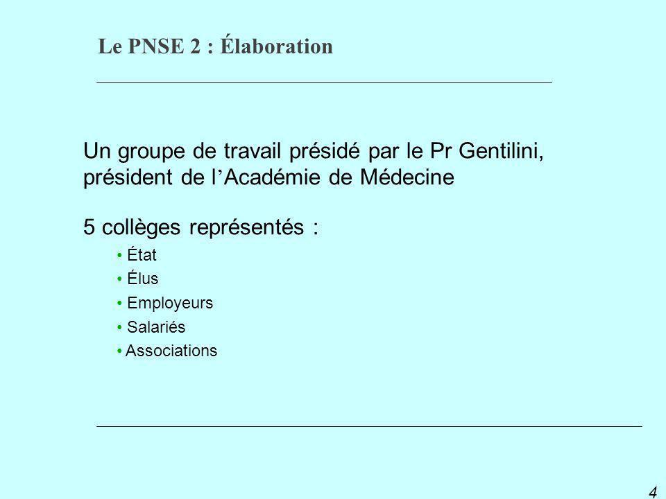 PNSE 2 4 Un groupe de travail présidé par le Pr Gentilini, président de l Académie de Médecine 5 collèges représentés : État Élus Employeurs Salariés Associations Le PNSE 2 : Élaboration