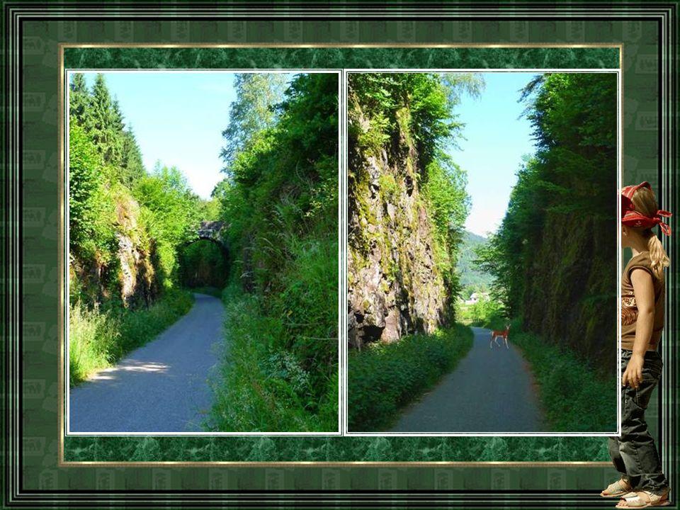 Avant le passage entre les roches Avant le passage entre les roches