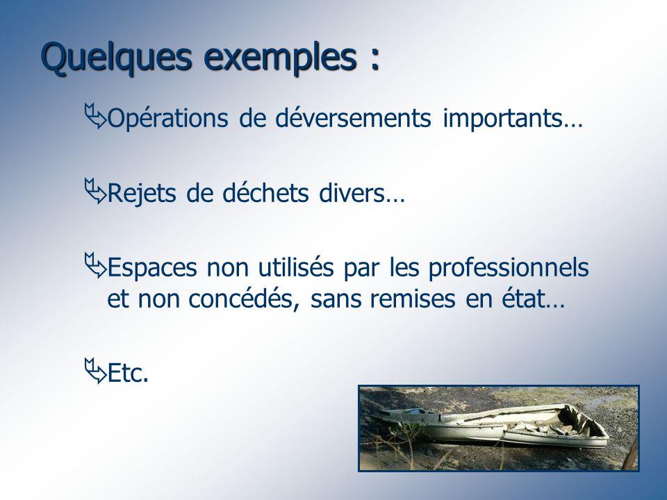 Quelques exemples : Opérations de déversements importants… Rejets de déchets divers… Espaces non utilisés par les professionnels et non concédés, sans remises en état… Etc.