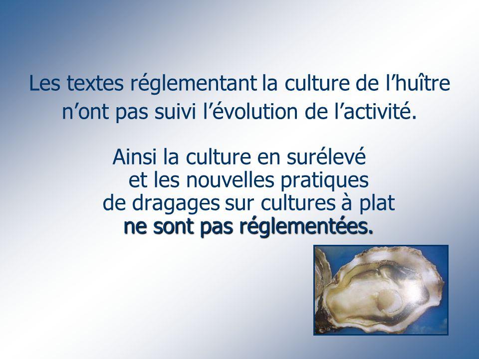 Les textes réglementant la culture de lhuître nont pas suivi lévolution de lactivité. ne sont pas réglementées. Ainsi la culture en surélevé et les no
