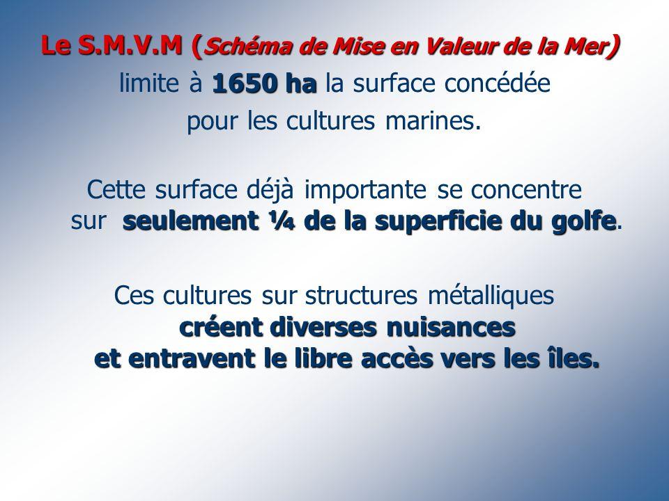 Le S.M.V.M ( Schéma de Mise en Valeur de la Mer ) 1650 ha limite à 1650 ha la surface concédée pour les cultures marines. seulement ¼ de la superficie