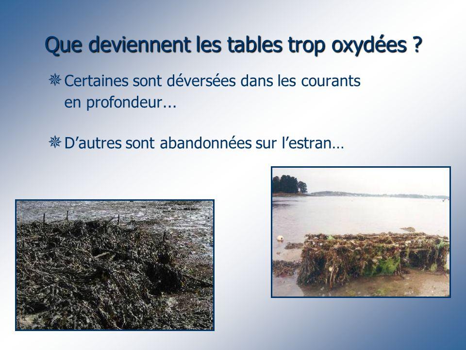 Que deviennent les tables trop oxydées ? Certaines sont déversées dans les courants en profondeur … Dautres sont abandonnées sur lestran…