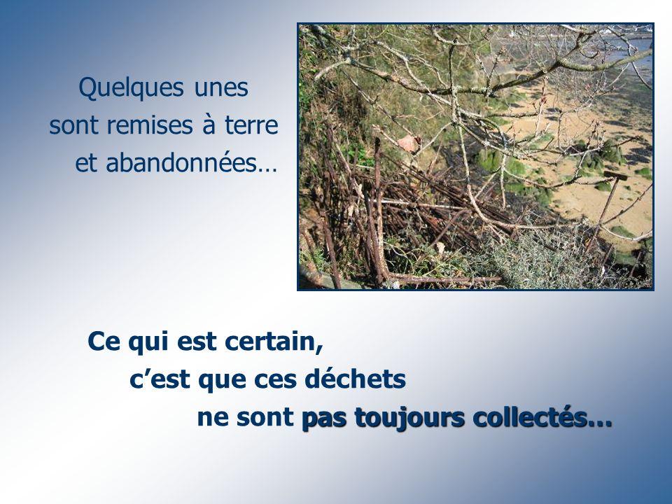 Ce qui est certain, cest que ces déchets pas toujours collectés… ne sont pas toujours collectés… Quelques unes sont remises à terre et abandonnées…