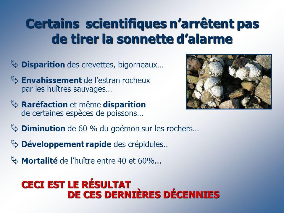 Certains scientifiques narrêtent pas de tirer la sonnette dalarme Disparition des crevettes, bigorneaux… Envahissement de lestran rocheux par les huît