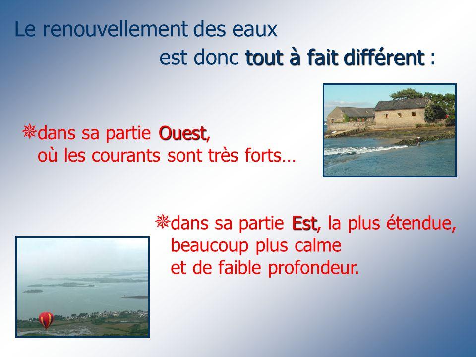 Le renouvellement des eaux tout à fait différent est donc tout à fait différent : Ouest dans sa partie Ouest, où les courants sont très forts… Est dans sa partie Est, la plus étendue, beaucoup plus calme et de faible profondeur.