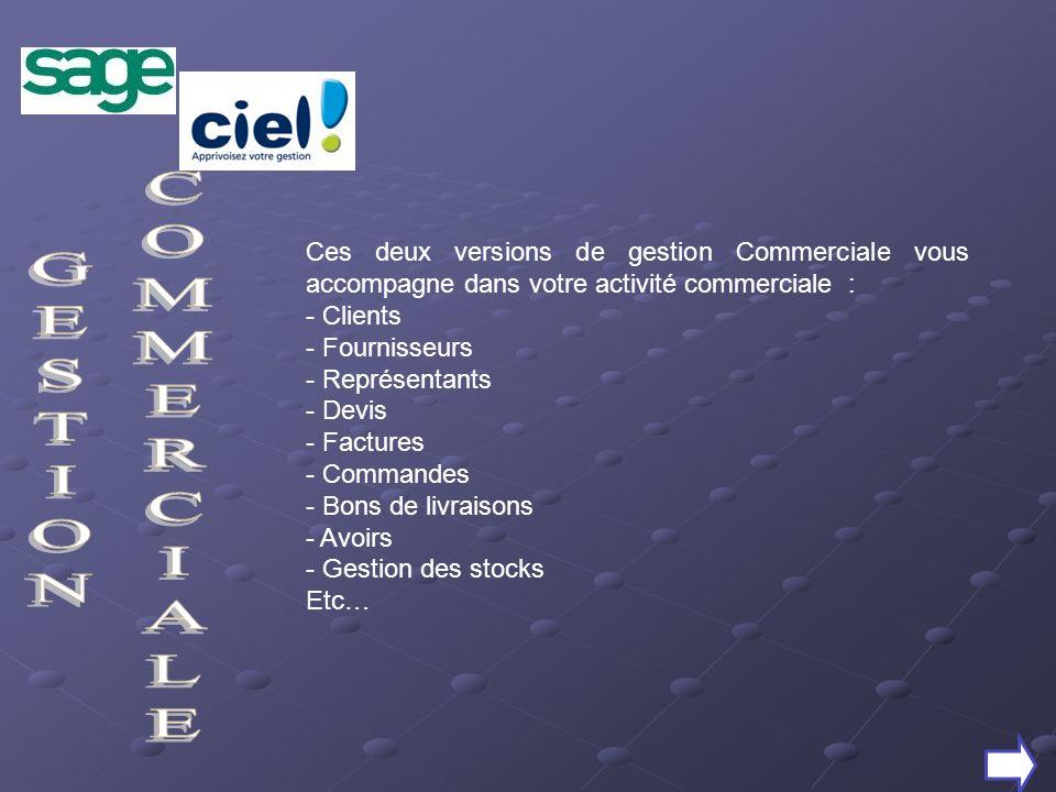 Ces deux versions de gestion Commerciale vous accompagne dans votre activité commerciale : - Clients - Fournisseurs - Représentants - Devis - Factures