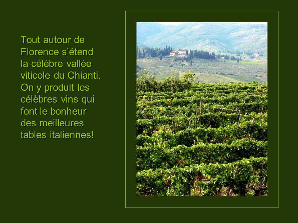 Tout autour de Florence sétend la célèbre vallée viticole du Chianti.