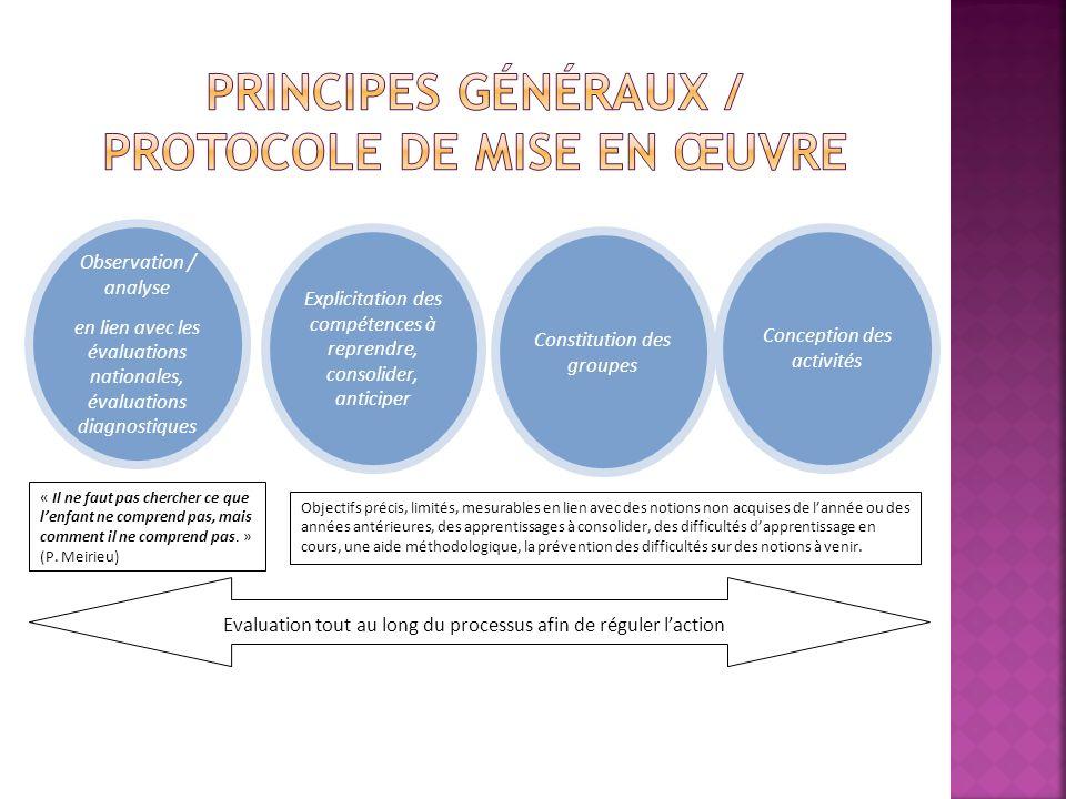 Observation / analyse en lien avec les évaluations nationales, évaluations diagnostiques Conception des activités Constitution des groupes Explicitati