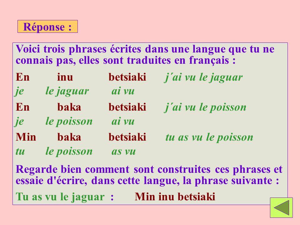 Réponse : Voici trois phrases écrites dans une langue que tu ne connais pas, elles sont traduites en français : En inu betsiakij´ai vu le jaguar je le