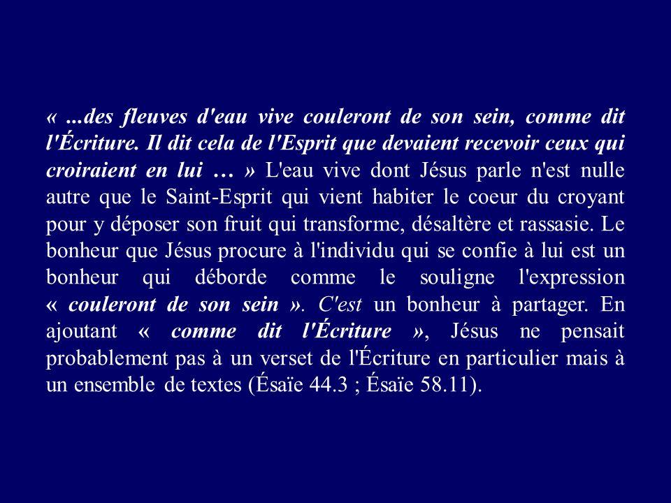 «...des fleuves d'eau vive couleront de son sein, comme dit l'Écriture. Il dit cela de l'Esprit que devaient recevoir ceux qui croiraient en lui … » L
