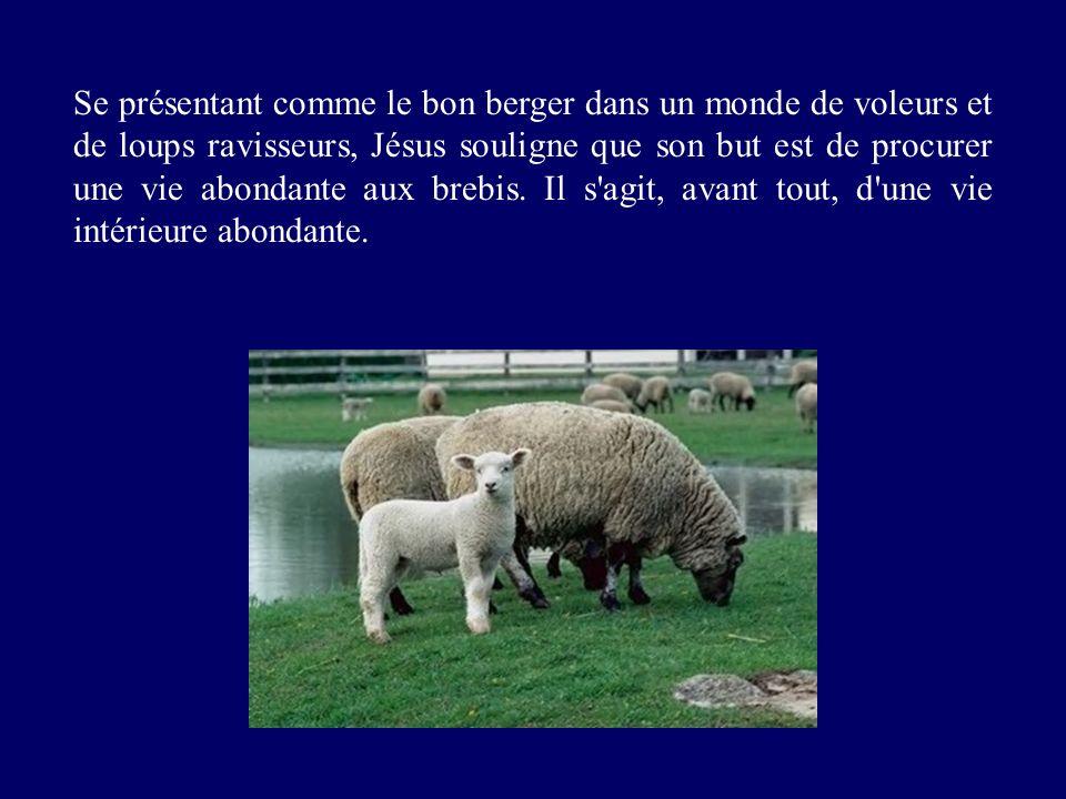 Se présentant comme le bon berger dans un monde de voleurs et de loups ravisseurs, Jésus souligne que son but est de procurer une vie abondante aux br