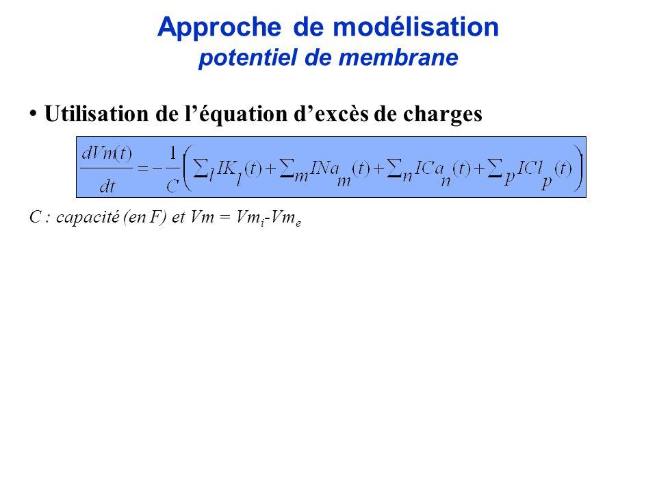 Approche de modélisation potentiel de membrane Utilisation de léquation dexcès de charges C : capacité (en F) et Vm = Vm i -Vm e