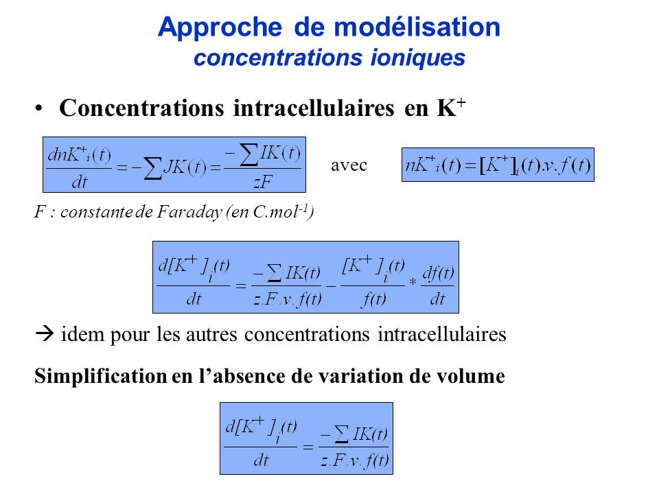 Concentrations intracellulaires en K + F : constante de Faraday (en C.mol -1 ) idem pour les autres concentrations intracellulaires Simplification en