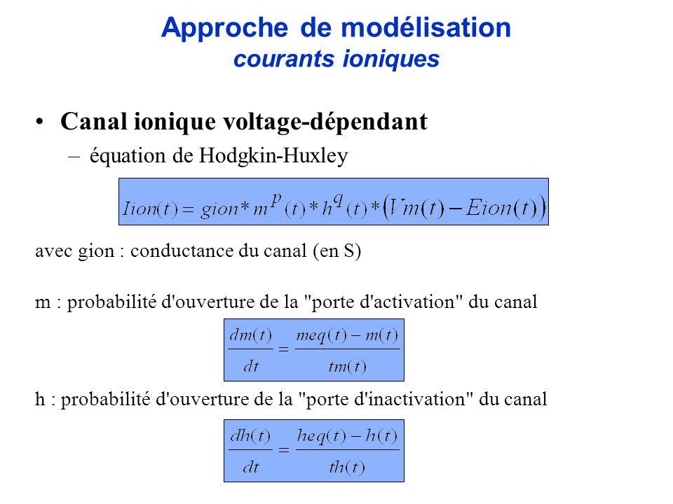 Canal ionique voltage-dépendant –équation de Hodgkin-Huxley avec gion : conductance du canal (en S) m : probabilité d'ouverture de la