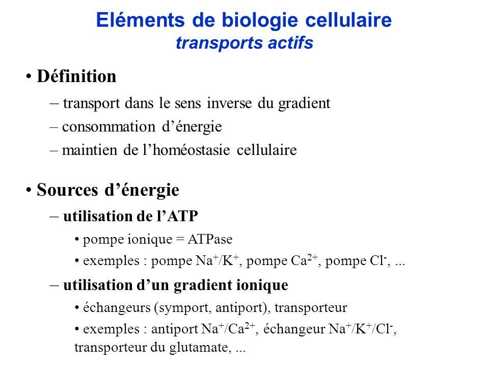 Eléments de biologie cellulaire transports passifs/actifs Ca 2+ Na + K+K+ K+K+ 3Na + 2K + Na + Ca 2+ Na + K+K+ Ca 2+ K+K+ Na + H + glu - ATP espace intracellulaire espace extracellulaire récepteur NMDA canaux voltage-dépendants canal Ca 2+ dépendant pompe Na + /K + antiport Na + /Ca 2+ transporteur du glutamate Na + K+K+ récepteur AMPA pompe Ca 2+ Na + K+K+ échangeur Na + /K + /Cl - Ca 2+ Cl - ATP Exemple : principaux canaux, échangeurs, pompes au niveau neuronal et astrocytaire