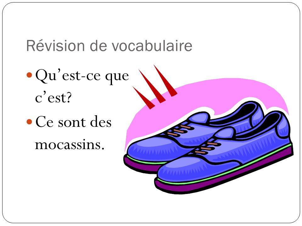 Révision de vocabulaire Quest-ce que cest? Ce sont des mocassins.