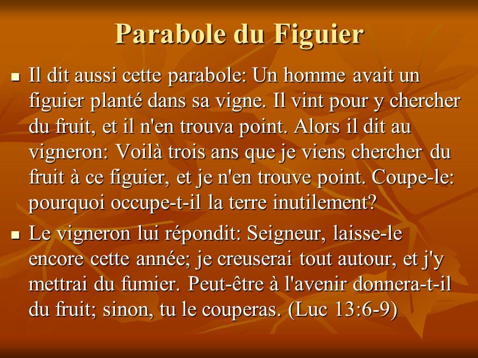 Parabole du Figuier Il dit aussi cette parabole: Un homme avait un figuier planté dans sa vigne. Il vint pour y chercher du fruit, et il n'en trouva p